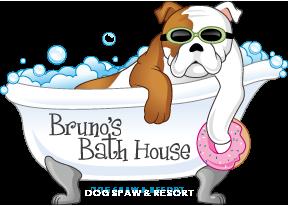 Bruno S Bath House Dog Spaw Resort